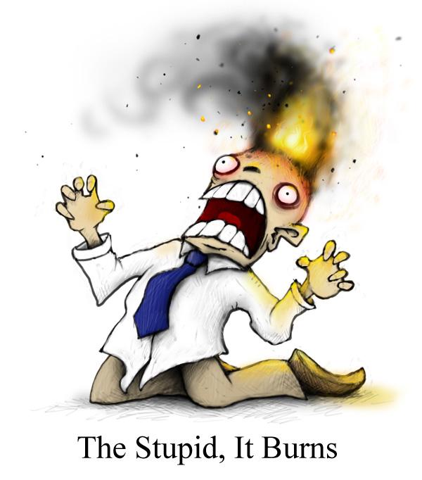 thestupiditburns.jpg